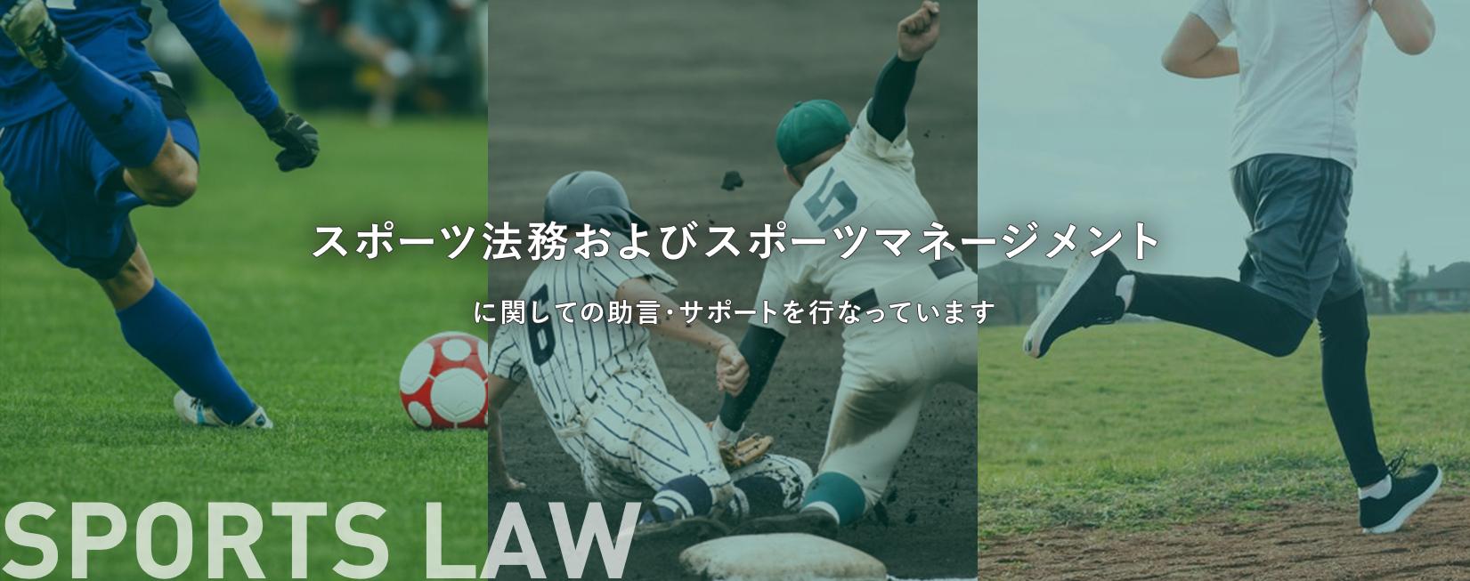 スポーツ法務およびスポーツマネージメントに関しての助言・サポートを行なっています